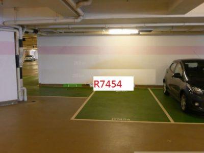 R7454 Photo