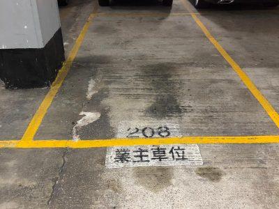 Shatin Carpark 1
